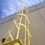 OSHA-Compliant Ladder Cage Vertical Lifeline System