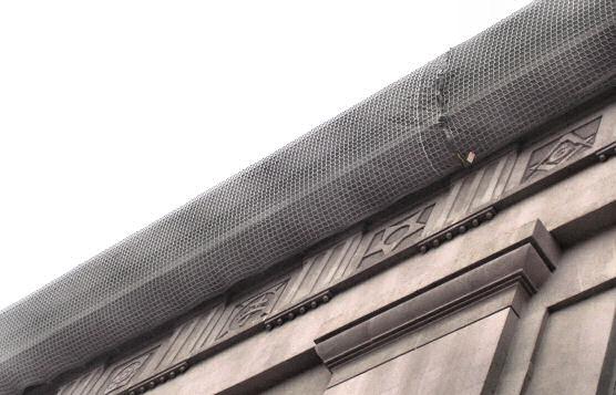 Debris Replacement Netting, Prince Hall Masonic Lodge, Washington, D.C.