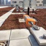Green Roof Horizontal Cable Lifeline on University Rooftop